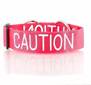 Collar Pet Dog Semi Choke Wide Safety Aware Warning Color Coded Red CAUTION L-XL