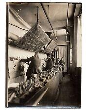 U106 Photographie vintage Originale Manufacture des Gobelins Tapis