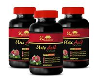 Brain & memory boost - URIC ACID FORMULA - green tea extract Weight loss - 3 B