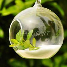 Hängende Glass Vase Blumenvase Pflanze Glas Wandvase Ball Form Tischdeko Töpfe