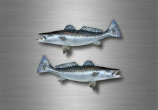 2x sticker vinyl fish boat kayak  canoe fishing decal salmon steelhead decor