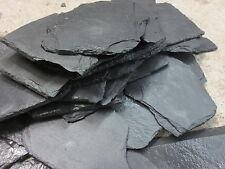 Schieferplatten Schiefersteine für Apuarium oder Terrarium  10 Stück ca 10 x 18