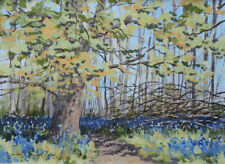 Original painting  'Bluebell woods, Dinefwr'  Acrylic on board  Framed