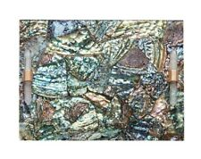 Sold Out & Rare Kendra Scott Abalone Tray with 14K crystal handles