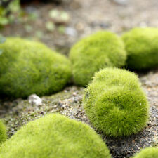 8 Pcs Fake Artificial Faux Emulation Moss Fuzzy Stone Ball Fairy Garden Decor LX