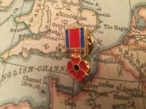 ARMED FORCES VETERAN POPPY MOD BRITISH ARMY RUC POLICE UDR pin badge 21