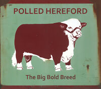 """""""TEXAS HEREFORD ASSOCIATION"""" POLLED, THE BIG BOLD BREED METAL SIGN"""