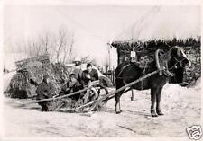 14010/ Originalfoto 7x10cm, Soldaten auf Panjeschlitten, Wintertarn