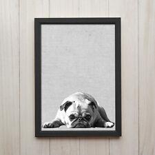 Mops Hund Schwarz Weiß Kunstdruck Poster A4 Tier Foto Geschenk Deko Bild Druck