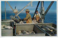 Unloading Salmon Fish Catch Fishing Boat Washington postcard