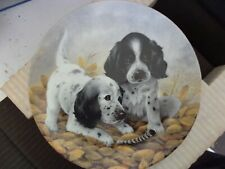 """English Setters 8 1/2"""" Plate, Fine Feathered Friends, by Edwin Knowles"""
