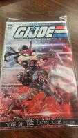 G.I. Joe #246 IDW 2 covers (RI-A,RI-B)