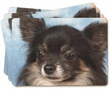 Black Chihuahua Dog Picture Placemats in Gift Box, AD-CH3P