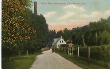 Canada London ON - Springbank Park Drive Way 1909 postcard