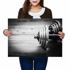 A2 - Barbell Weights Gym Fitness Poster 59.4X42cm280gsm #12869