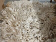 HERDWICK CROSS BLUEFACED LEICESTER SHEEP FULL FLEECE RAW UNWASHED SPINNING WOOL