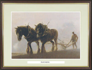 """Shire Horse Ploughing  picture """"Ploughing"""" by John Young - NGN148"""