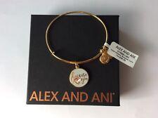 Alex and Ani BECAUSE I LOVE You Charm Bangle Bracelet NWT BOX Color Infusion
