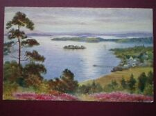 POSTCARD DUNBARTONSHIRE LOCH LOMOND THE ISLANDS