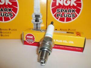 4pcs 98-03 Honda VT750C//CD Shadow ACE NGK Standard Spark Plugs 745cc 45ci oa