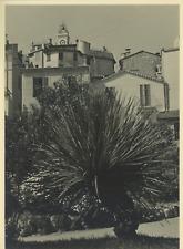 France, le Cannet Vintage Print Tirage argentique  17x22  Circa 1939