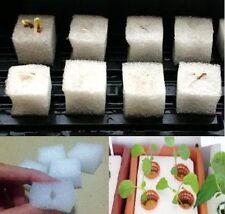 Sponges for hydroponic aeroponic plant seed grow Premium grade 15 Pcs