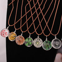 1X Lucky Glass Lovely Pendant Real Dried Pressed Flower Necklace Exqusite