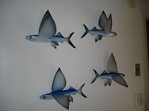"""15"""" Flying Fish Half Mount Replica 2 Wings Up Left Facing 10 Day Production Time"""