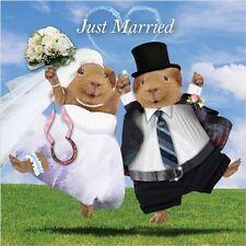 """Crazy crew-cobayes """"just married"""" - carré carte de vœux"""