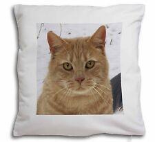 Pretty Ginger Cat Soft Velvet Feel Cushion Cover With Inner Pillow, AC-116-CPW