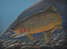Brown Trout Print 11 x 14 by Doug Walpus Fly Fishing Wildlife Art Wall Decor