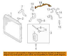 TOYOTA OEM 96-00 4Runner Radiator Coolant-Lower Hose 1657275090