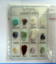 NATURAL UNPOLISHED 12 GEMSTONE & MINERAL CRYSTAL CARD Gift Educational