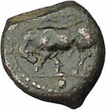 GELA In SICILY 420BC Bull & Gelas Authentic Ancient Greek Coin i46023