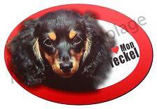 """Magnet chien """"J'aime mon Teckel à poil long"""" frigo / voiture idée cadeau NEUF"""