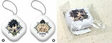 Fairy Tail Dragon Cry Puni Puni Arm Pillow Half w/ Ball Chain Gray Fullbuster NW