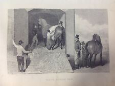 Race Horse Van, Antique Print c1868, Horse Racing, Countryside, Rural