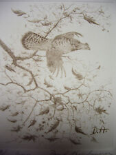 David  Hagerbaumer   Original Hand Signed  Etching   Ruff Grouse