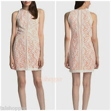 NWT 12 M-L MUSE Gorgeous Stripe Insert Lace Sheath Shift Dress Resort $188