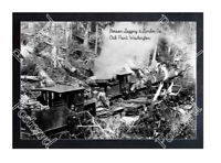 Historic Benson Logging & Lumber Co. - Oak Point, Washington Train Postcard 3