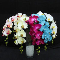 KQ_ Artificial Butterfly Orchid Silk Floral Flower Stem Party Wedding Home Decor