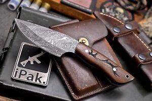 CFK IPAK Handmade Damascus Custom DEER ANTLER Engraved Rosewood Hunting Knife