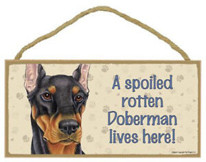 """Doberman Black Dog Sign Plaque 10""""x5"""" House not Home, Spoiled Lives Here, Love"""