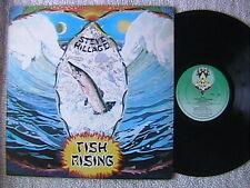 "STEVE HILLAGE ""FISH RISING"" LP 1975 ORIGINAL DUTCH IMPORT EX GONG"