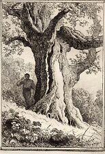 EAU FORTE / Fables de la Fontaine 1883 / LE GLAN ET LA CITROUILLE