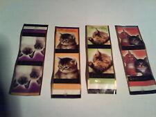 Las imágenes de gatos-nota-papel delgado (9x3 cm) de chocolate -- günthart & co.kg-nr.2