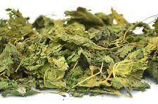 Stinging Nettle Leaf & Cut Dried Herb, Nettle Tea, Nettle Herb - Premium Quality