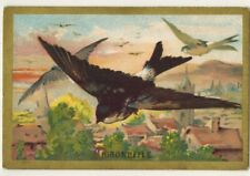 XXe-Image Chromo doré-Arlatte.Cambrai-Hirondelle(Delichon urbica)-Faune-D.72