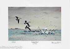"""EMPTY BLIND"" Flock of Canadians Landing on Snow Mint s/n Print By Les Kouba"