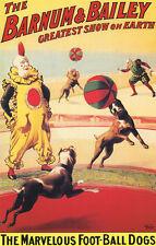 Barnum & Bailey Circus Poster, the Greatest Show on Earth, Football Dogs